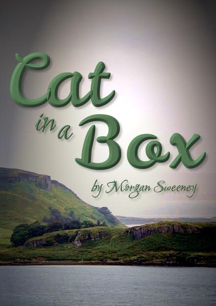 Cat-in a-Box
